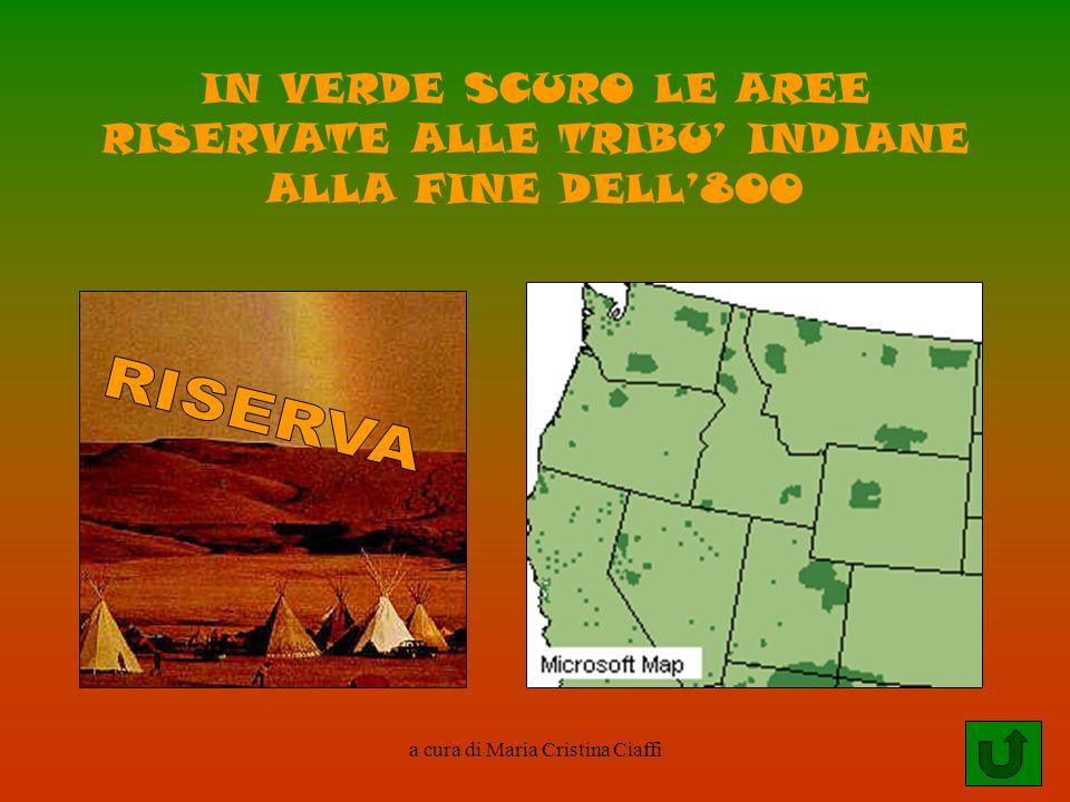 a cura di Maria Cristina Ciaffi IN VERDE SCURO LE AREE RISERVATE ALLE TRIBU INDIANE ALLA FINE DELL800