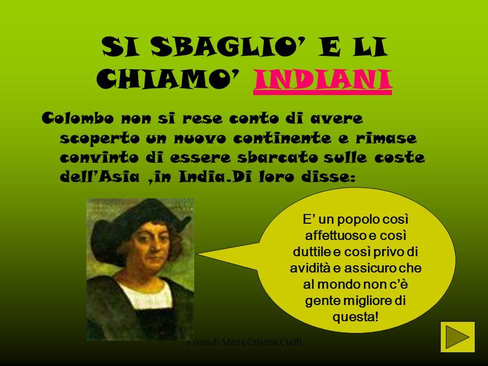 a cura di Maria Cristina Ciaffi CI FURONO TANTI ALTRI VIAGGI VERSO LA NUOVA TERRA