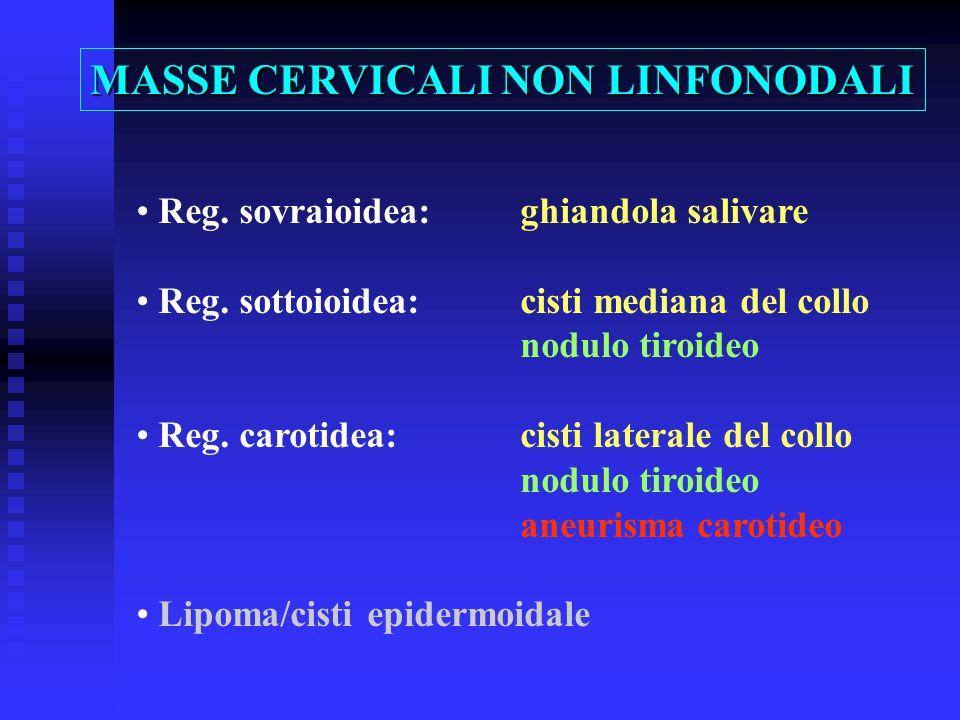 Reg. sovraioidea:ghiandola salivare Reg. sottoioidea:cisti mediana del collo nodulo tiroideo Reg. carotidea:cisti laterale del collo nodulo tiroideo a