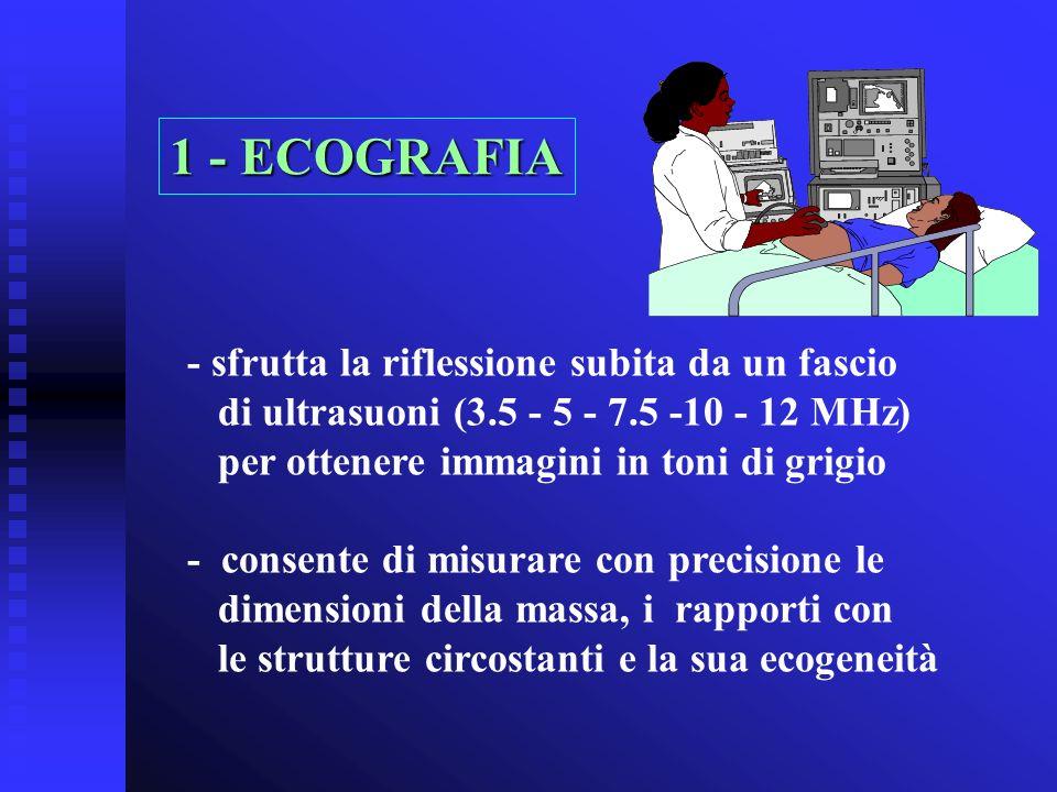 - sfrutta la riflessione subita da un fascio di ultrasuoni (3.5 - 5 - 7.5 -10 - 12 MHz) per ottenere immagini in toni di grigio - consente di misurare