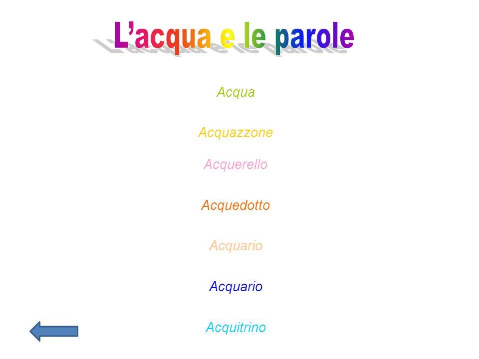 Acqua Acquazzone Acquerello Acquedotto Acquario Acquitrino