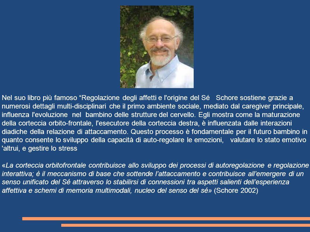 Nel suo libro più famoso Regolazione degli affetti e l'origine del Sé Schore sostiene grazie a numerosi dettagli multi-disciplinari che il primo ambie
