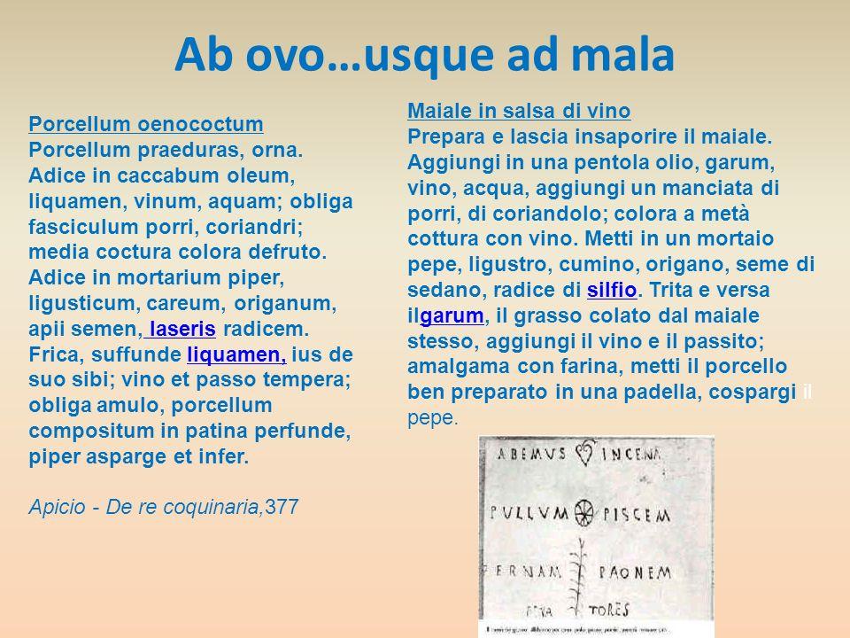 Ab ovo…usque ad mala Porcellum oenococtum Porcellum praeduras, orna. Adice in caccabum oleum, liquamen, vinum, aquam; obliga fasciculum porri, coriand