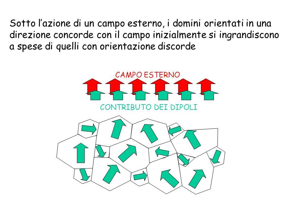 Sotto lazione di un campo esterno, i domini orientati in una direzione concorde con il campo inizialmente si ingrandiscono a spese di quelli con orien