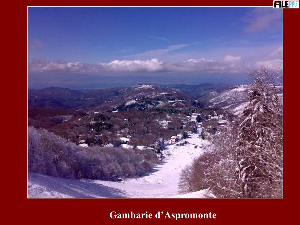 Panorama da San Niceto (Motta S.Giovanni)