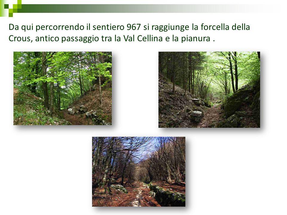 Da qui percorrendo il sentiero 967 si raggiunge la forcella della Crous, antico passaggio tra la Val Cellina e la pianura.