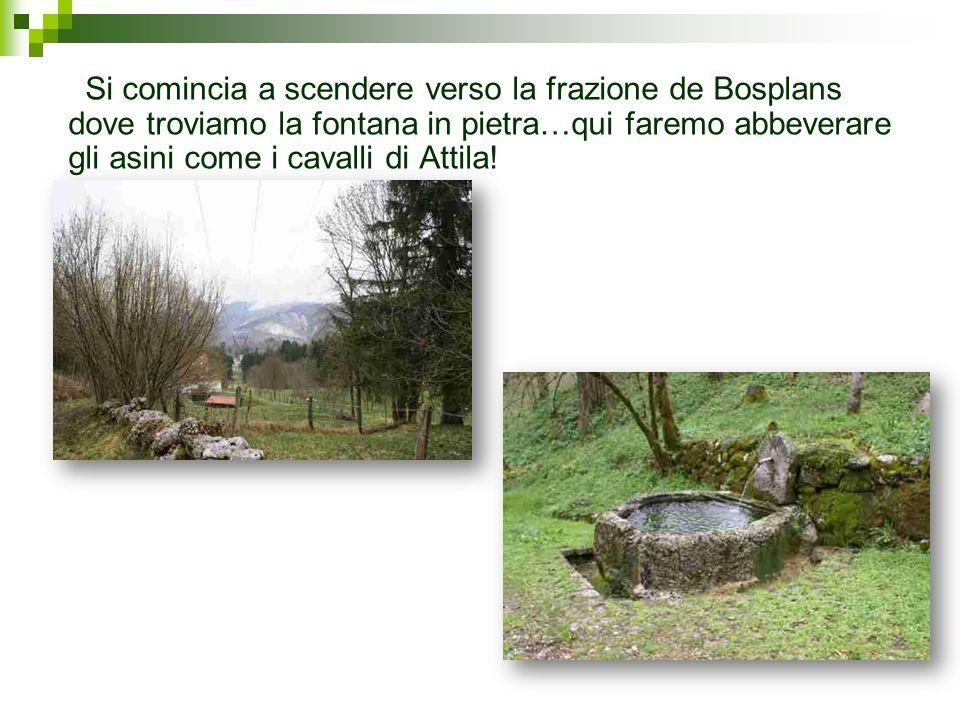 Si comincia a scendere verso la frazione de Bosplans dove troviamo la fontana in pietra…qui faremo abbeverare gli asini come i cavalli di Attila!