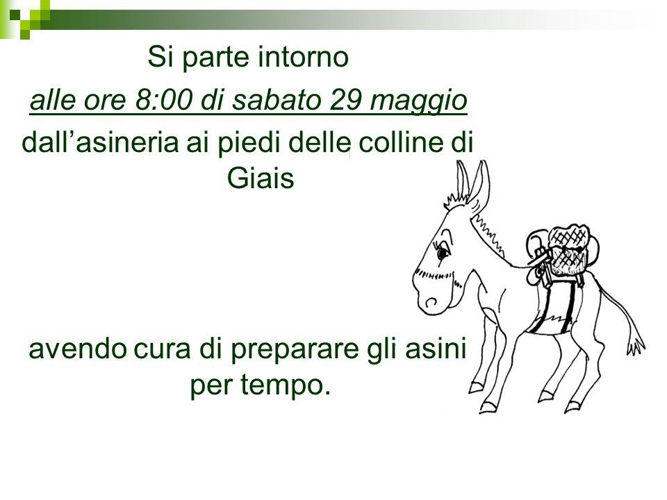 Si parte intorno alle ore 8:00 di sabato 29 maggio dallasineria ai piedi delle colline di Giais avendo cura di preparare gli asini per tempo.