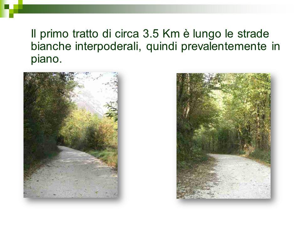 Il primo tratto di circa 3.5 Km è lungo le strade bianche interpoderali, quindi prevalentemente in piano.