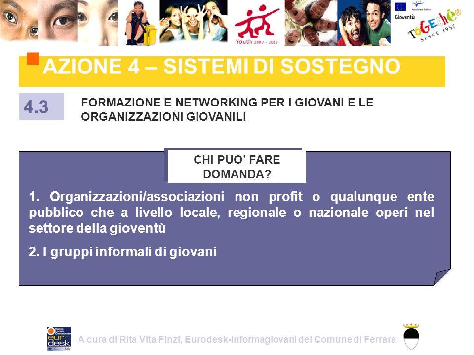 AZIONE 4 – SISTEMI DI SOSTEGNO FORMAZIONE E NETWORKING PER I GIOVANI E LE ORGANIZZAZIONI GIOVANILI 4.3 CHI PUO FARE DOMANDA.