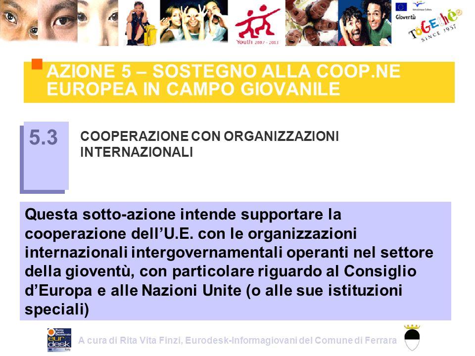 AZIONE 5 – SOSTEGNO ALLA COOP.NE EUROPEA IN CAMPO GIOVANILE COOPERAZIONE CON ORGANIZZAZIONI INTERNAZIONALI 5.3 Questa sotto-azione intende supportare la cooperazione dellU.E.