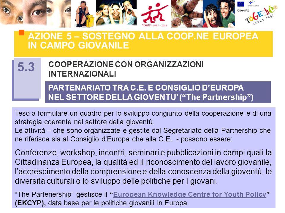 AZIONE 5 – SOSTEGNO ALLA COOP.NE EUROPEA IN CAMPO GIOVANILE COOPERAZIONE CON ORGANIZZAZIONI INTERNAZIONALI 5.3 Teso a formulare un quadro per lo sviluppo congiunto della cooperazione e di una strategia coerente nel settore della gioventù.