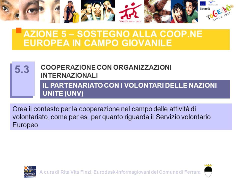 AZIONE 5 – SOSTEGNO ALLA COOP.NE EUROPEA IN CAMPO GIOVANILE COOPERAZIONE CON ORGANIZZAZIONI INTERNAZIONALI 5.3 Crea il contesto per la cooperazione nel campo delle attività di volontariato, come per es.