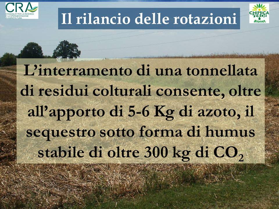 Linterramento di una tonnellata di residui colturali consente, oltre allapporto di 5-6 Kg di azoto, il sequestro sotto forma di humus stabile di oltre 300 kg di CO 2 Il rilancio delle rotazioni