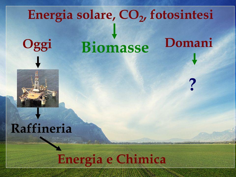 Energia solare, CO 2, fotosintesi Biomasse Energia e Chimica Oggi Raffineria Domani ?