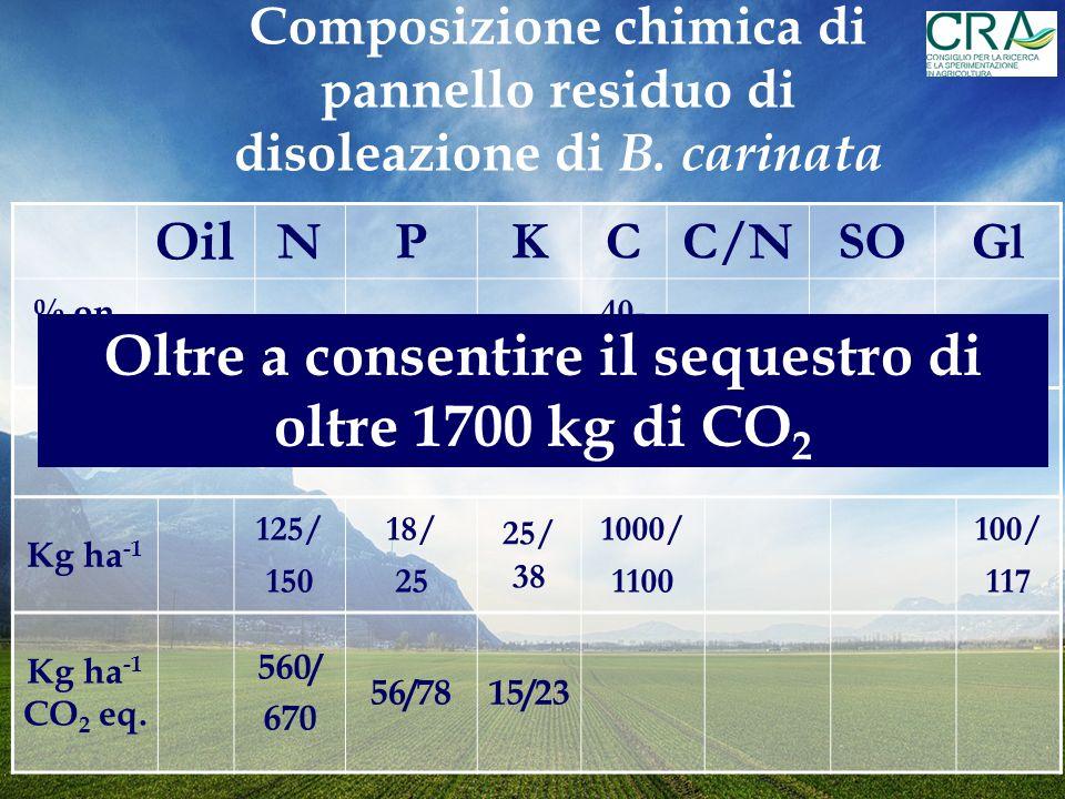 Oil NPKCC/NSOGl % on DM 9-12 5-60.7-11-1.5 40- 45 7-880/854.1/4.7 Interrando 2.5 t ha -1 di biomassa incorporiamo: Kg ha -1 125/ 150 18/ 25 25/ 38 1000/ 1100 100/ 117 Kg ha -1 CO 2 eq.