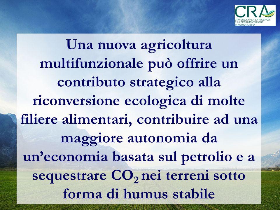 Una nuova agricoltura multifunzionale può offrire un contributo strategico alla riconversione ecologica di molte filiere alimentari, contribuire ad una maggiore autonomia da uneconomia basata sul petrolio e a sequestrare CO 2 nei terreni sotto forma di humus stabile