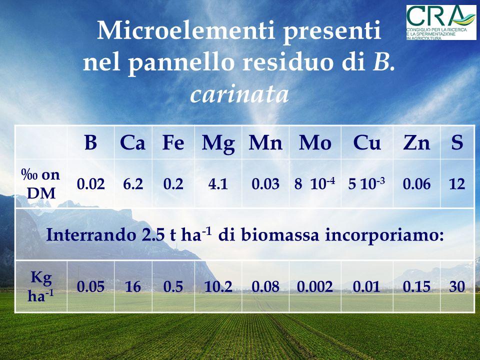 BCaFeMgMnMoCuZnS on DM 0.026.20.24.10.038 10 -4 5 10 -3 0.0612 Interrando 2.5 t ha -1 di biomassa incorporiamo: Kg ha -1 0.05160.510.20.080.0020.010.1530 Microelementi presenti nel pannello residuo di B.
