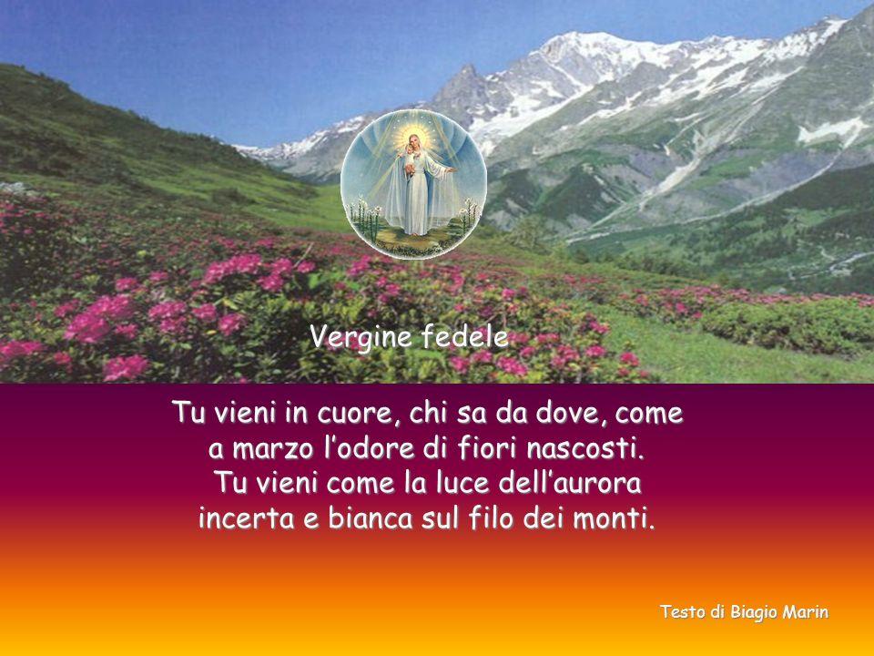 Vergine fedele Tu vieni in cuore, chi sa da dove, come a marzo lodore di fiori nascosti.