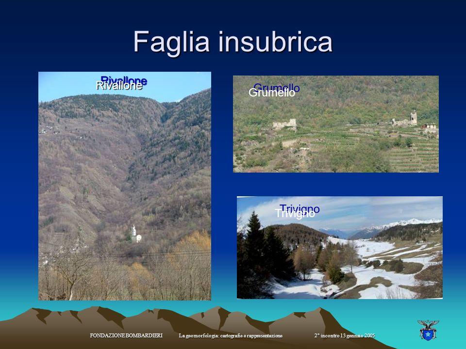 FONDAZIONE BOMBARDIERI La geomorfologia: cartografie e rappresentazione 2° incontro 13 gennaio 2005 Faglia insubrica