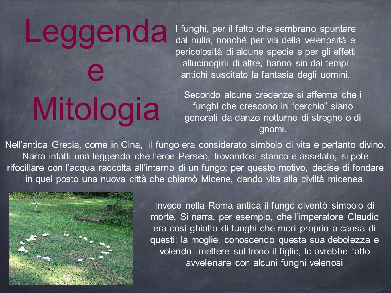 Leggenda e Mitologia I funghi, per il fatto che sembrano spuntare dal nulla, nonché per via della velenosità e pericolosità di alcune specie e per gli
