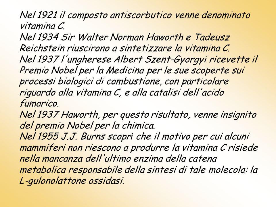 Nel 1921 il composto antiscorbutico venne denominato vitamina C. Nel 1934 Sir Walter Norman Haworth e Tadeusz Reichstein riuscirono a sintetizzare la