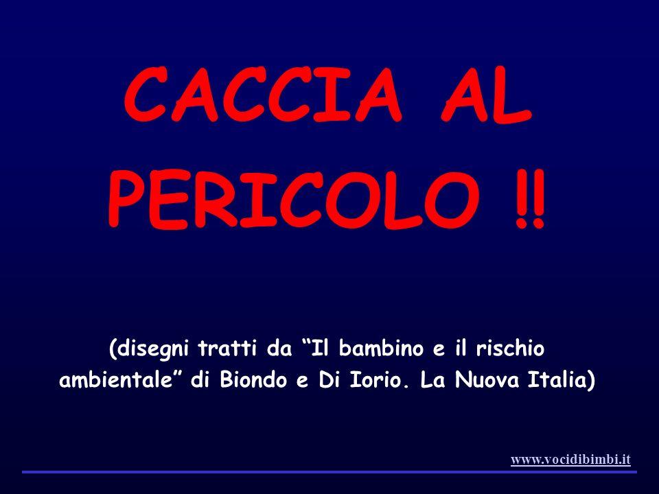 CACCIA AL PERICOLO !! (disegni tratti da Il bambino e il rischio ambientale di Biondo e Di Iorio. La Nuova Italia) www.vocidibimbi.it