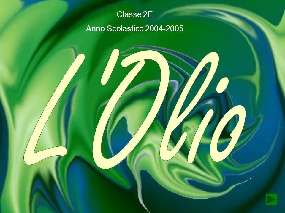Classe 2E Anno Scolastico 2004-2005