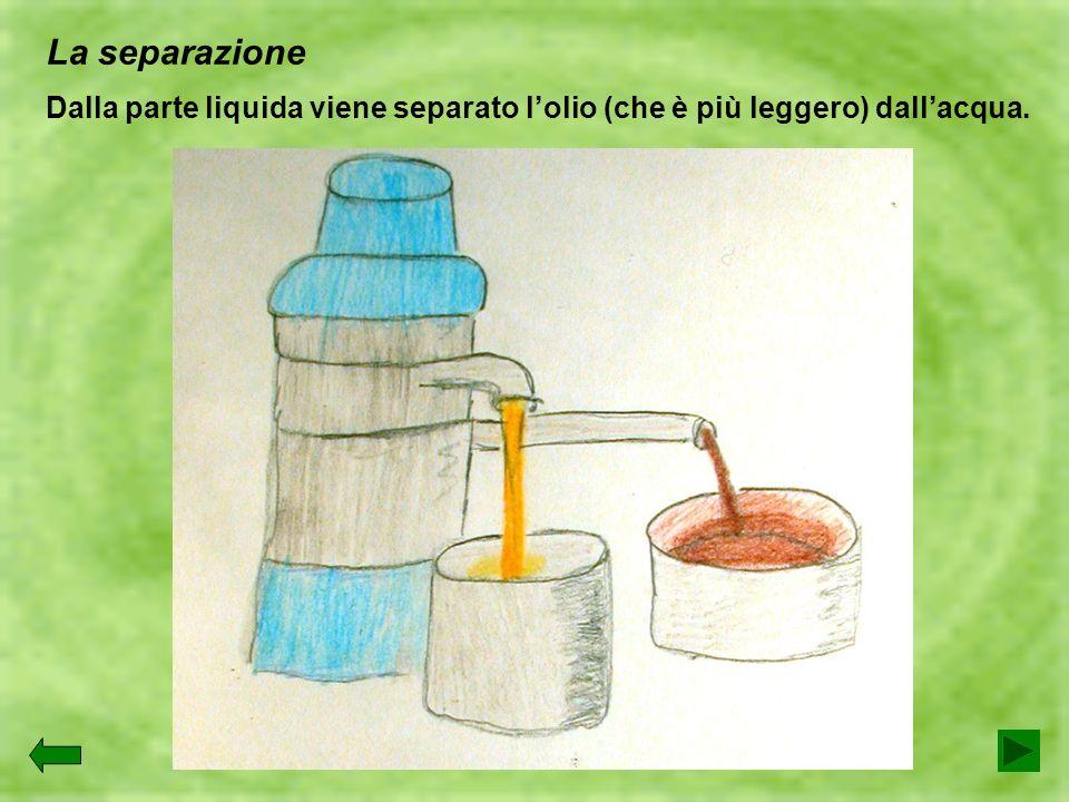 La separazione Dalla parte liquida viene separato lolio (che è più leggero) dallacqua.