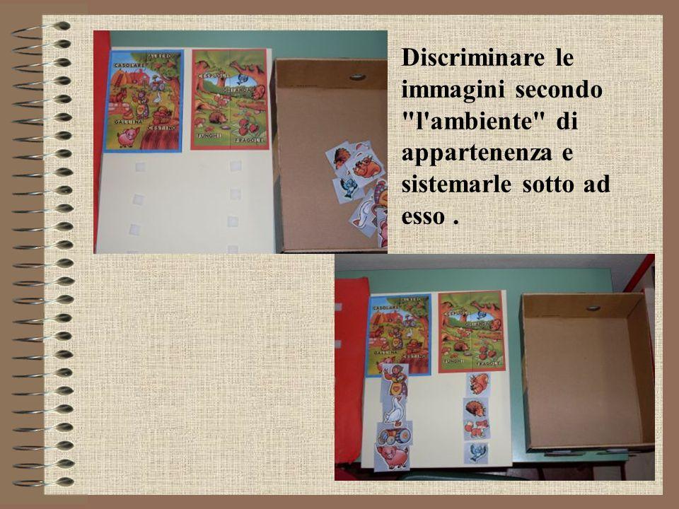 Discriminare le immagini secondo