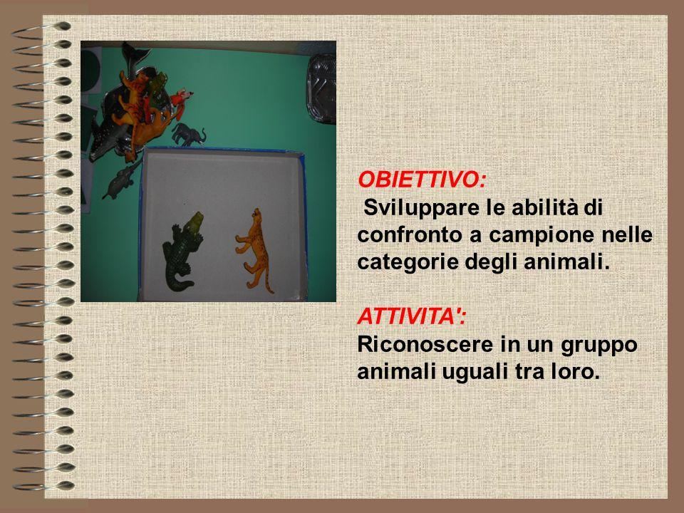 OBIETTIVO: Sviluppare le abilità di confronto a campione nelle categorie degli animali. ATTIVITA': Riconoscere in un gruppo animali uguali tra loro.