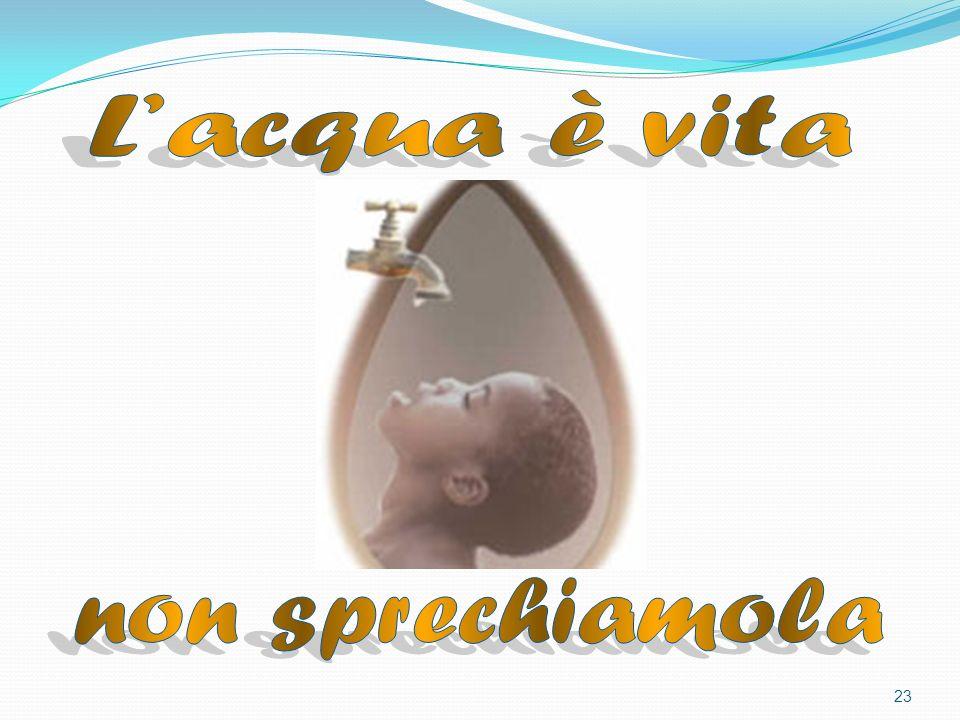22 Per sensibilizzare lopinione pubblica su questo tema, lOnu ha stabilito che il 22 marzo di ogni anno si tenga la Giornata mondiale dellacqua, giunta nel 2008 alla quinta edizione.