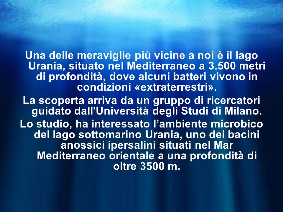 Una delle meraviglie più vicine a noi è il lago Urania, situato nel Mediterraneo a 3.500 metri di profondità, dove alcuni batteri vivono in condizioni