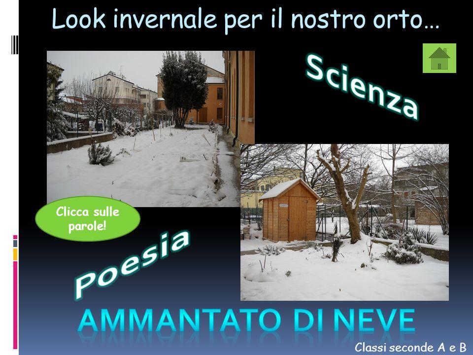 Look invernale per il nostro orto… Classi seconde A e B Clicca sulle parole!