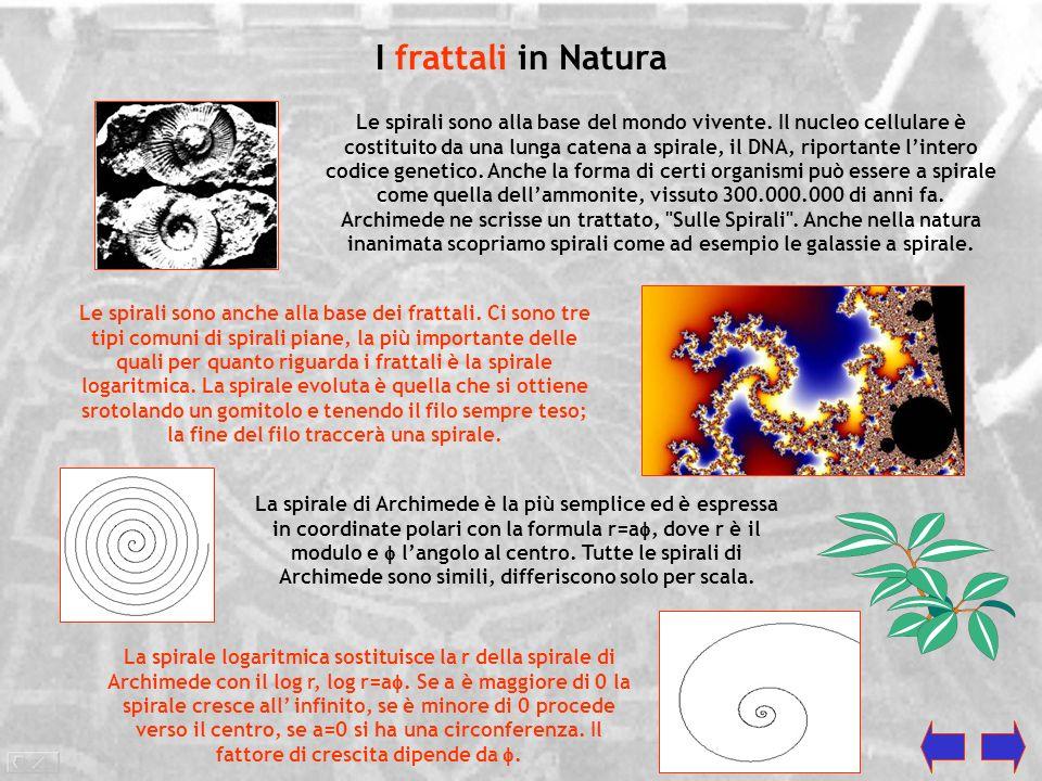 Frattali: la Geometria della Complessità I frattali sono figure geometriche ad alto grado di complessità, caratterizzate dal ripetersi sino allinfinit