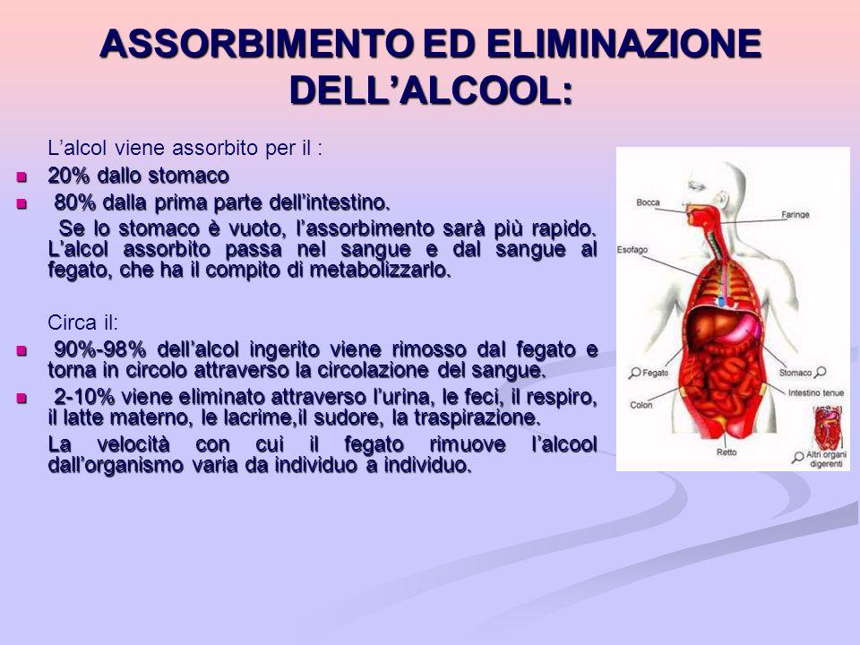 ASSORBIMENTO ED ELIMINAZIONE DELLALCOOL: Lalcol viene assorbito per il : 20% dallo stomaco 20% dallo stomaco 80% dalla prima parte dellintestino. 80%