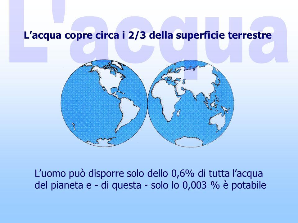 Lacqua copre circa i 2/3 della superficie terrestre Luomo può disporre solo dello 0,6% di tutta lacqua del pianeta e - di questa - solo lo 0,003 % è potabile