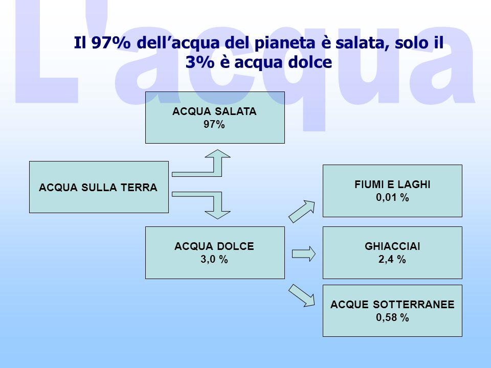 ACQUA SULLA TERRA ACQUE SOTTERRANEE 0,58 % ACQUA DOLCE 3,0 % GHIACCIAI 2,4 % FIUMI E LAGHI 0,01 % ACQUA SALATA 97% Il 97% dellacqua del pianeta è salata, solo il 3% è acqua dolce