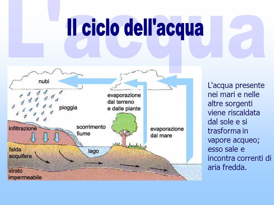 L acqua presente nei mari e nelle altre sorgenti viene riscaldata dal sole e si trasforma in vapore acqueo; esso sale e incontra correnti di aria fredda.