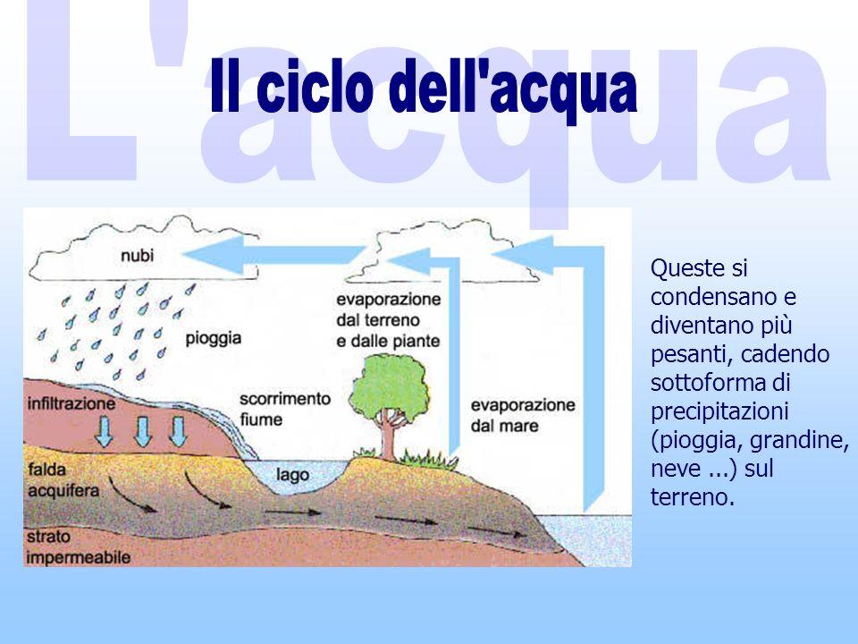 Queste si condensano e diventano più pesanti, cadendo sottoforma di precipitazioni (pioggia, grandine, neve...) sul terreno.