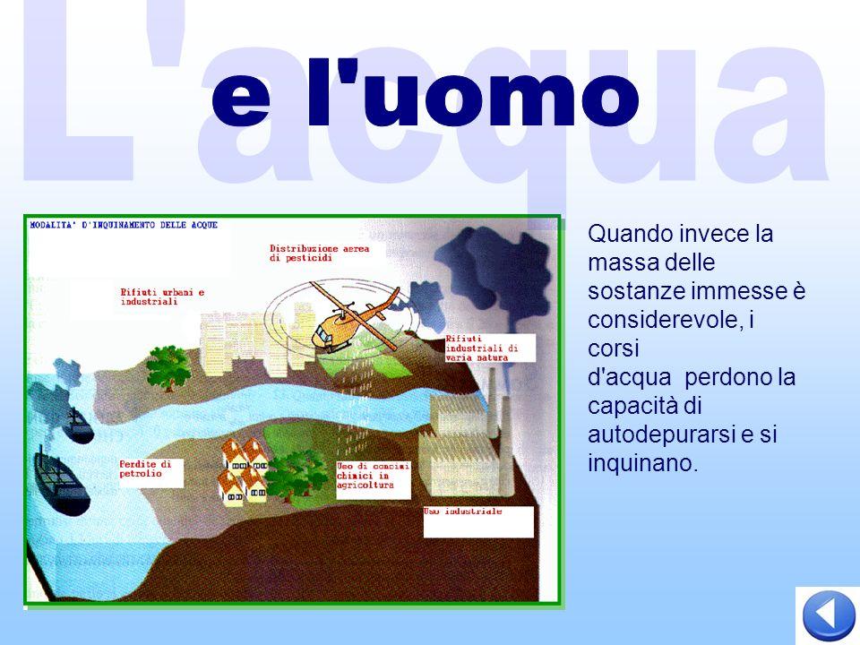 Quando invece la massa delle sostanze immesse è considerevole, i corsi d acqua perdono la capacità di autodepurarsi e si inquinano.