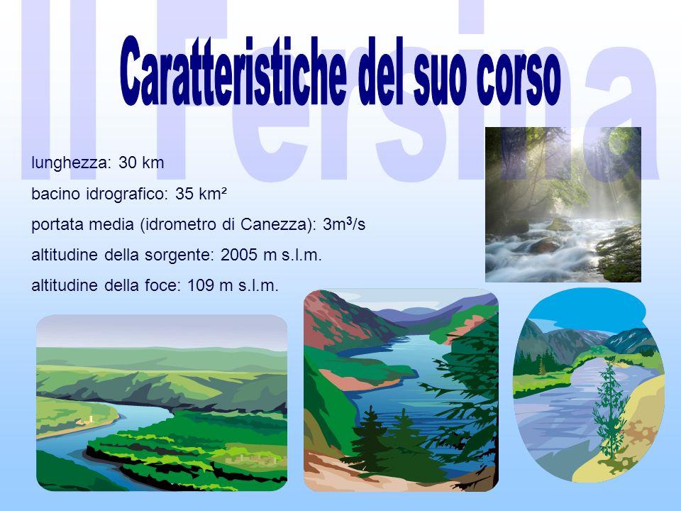 lunghezza: 30 km bacino idrografico: 35 km² portata media (idrometro di Canezza): 3m 3 /s altitudine della sorgente: 2005 m s.l.m.