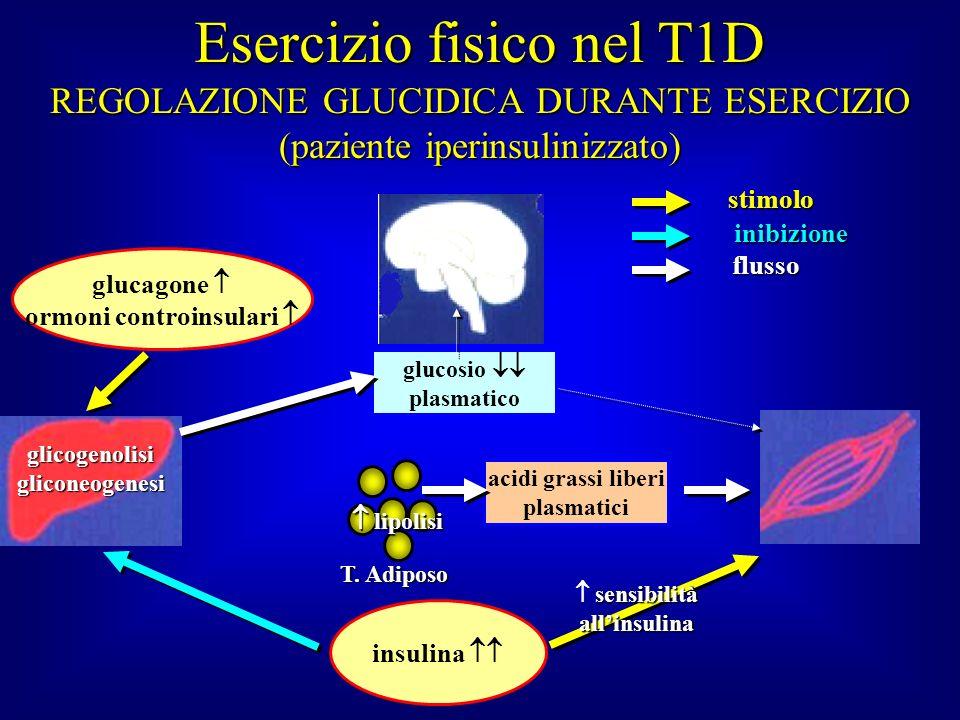 T. Adiposo glucagone ormoni controinsulari acidi grassi liberi plasmatici glicogenolisigliconeogenesi glucosio plasmatico stimolo inibizione flusso RE