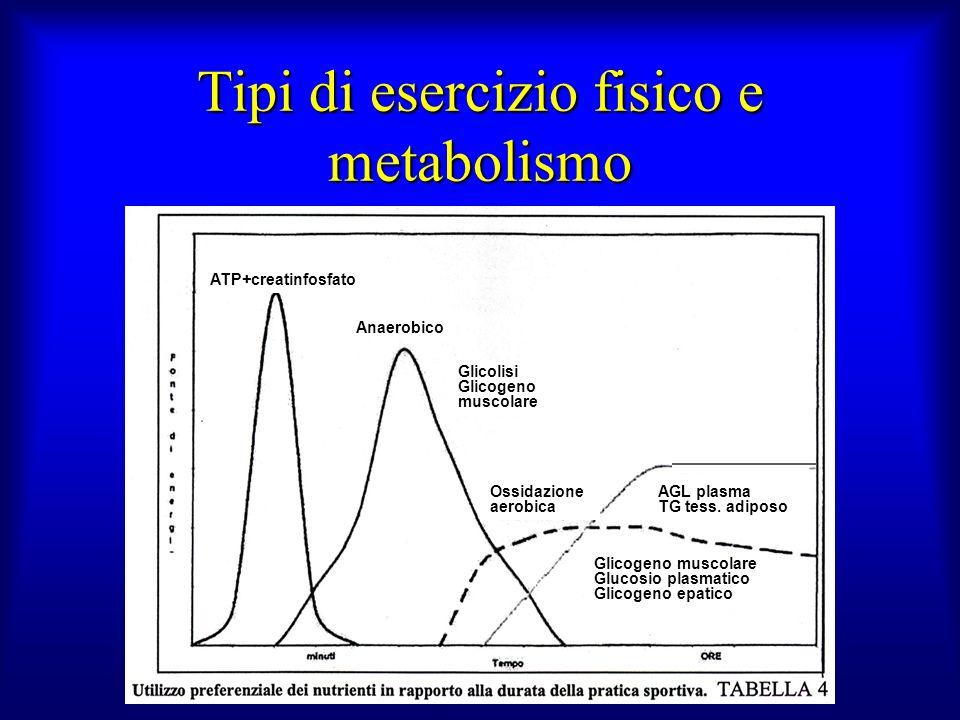 Tipi di esercizio fisico e metabolismo ATP+creatinfosfato Anaerobico Glicolisi Glicogeno muscolare Ossidazione aerobica AGL plasma TG tess. adiposo Gl