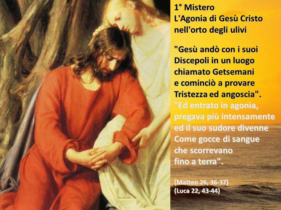 Il Santo Rosario Misteri dolorosi I misteri del dolore portano a rivivere la morte di Gesù ponendosi sotto la croce accanto a Maria, per penetrare con