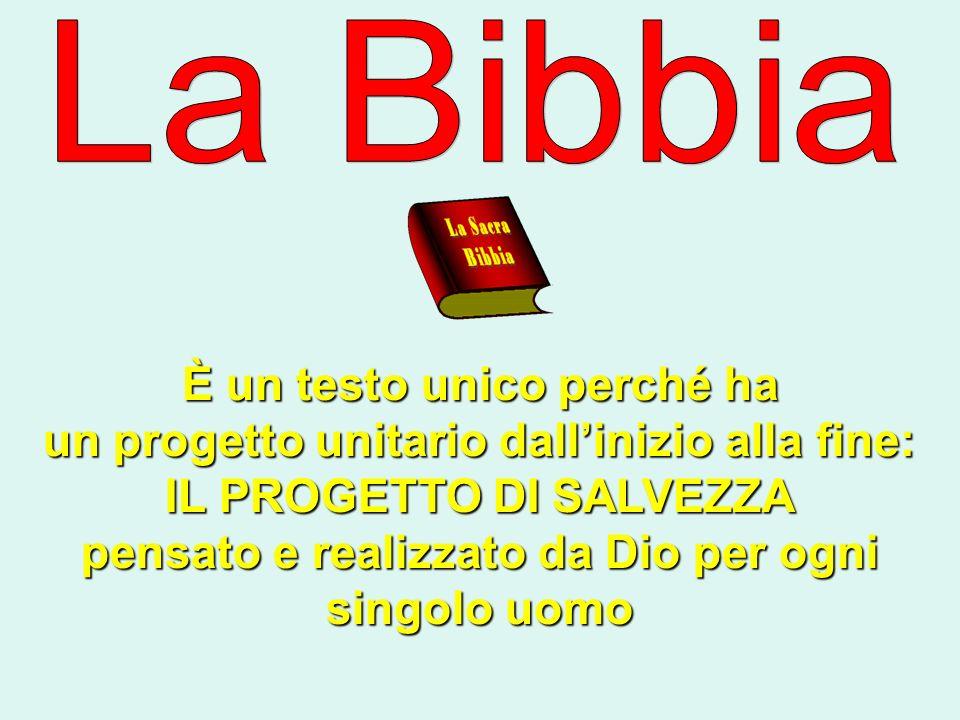 La Bibbia è utilizzata nella Chiesa La Bibbia è utilizzata nella Chiesa Nei rituali dei sacramenti.