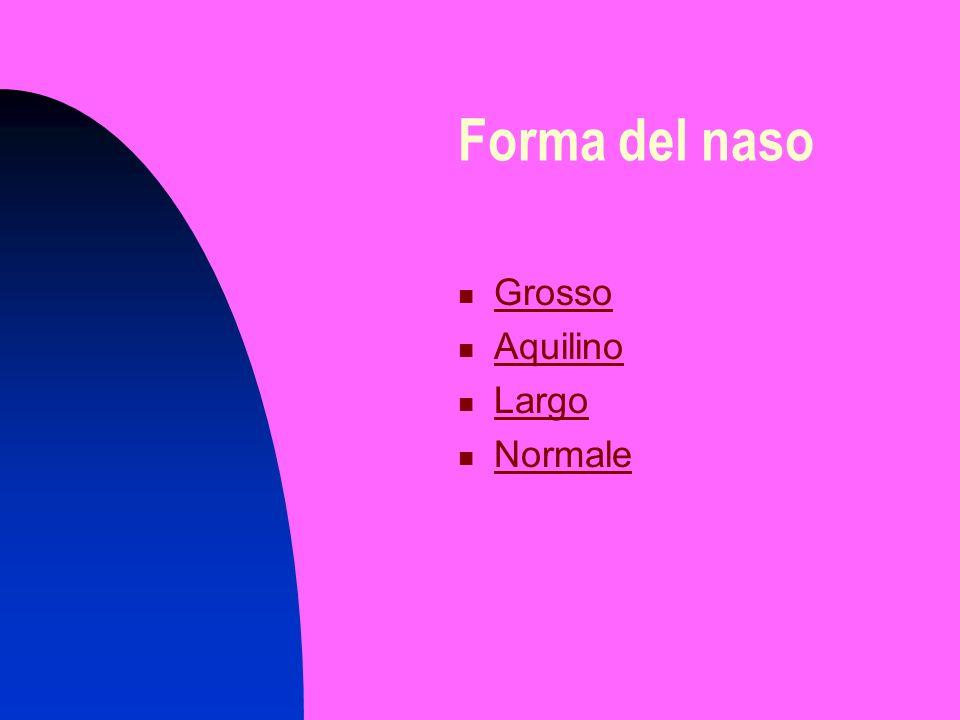 Forma del naso Grosso Aquilino Largo Normale