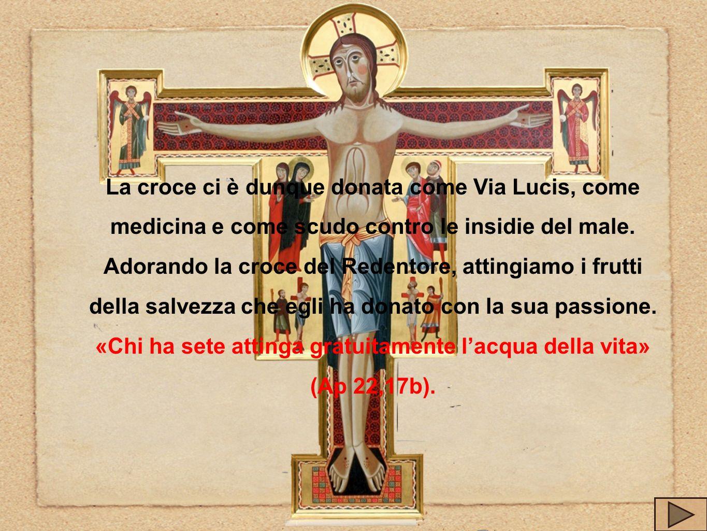 La croce ci è dunque donata come Via Lucis, come medicina e come scudo contro le insidie del male. Adorando la croce del Redentore, attingiamo i frutt