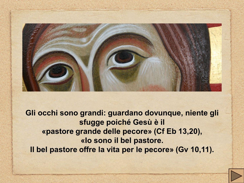 Gli occhi sono grandi: guardano dovunque, niente gli sfugge poiché Gesù è il «pastore grande delle pecore» (Cf Eb 13,20), «Io sono il bel pastore. Il