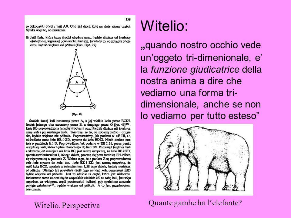 Witelio: quando nostro occhio vede unoggeto tri-dimenionale, e la funzione giudicatrice della nostra anima a dire che vediamo una forma tri- dimension